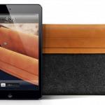Nuevas fundas para mini iPad   Entuespacio.com TV - Tecnología ...   Antonio Galvez   Scoop.it