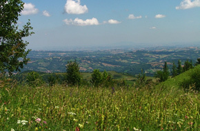 Marche Photographs | Holidays in Marche | Scoop.it