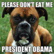 Dogs Against Obama | #ObamaDogRecipes | Scoop.it