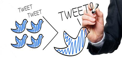 A cosa serve avere tanti follower su Twitter?   Social Media Consultant 2012   Scoop.it