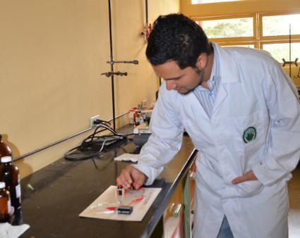 Crean biomateriales magnéticos y conductores de electricidad - Dicyt | Biotecnología celular | Scoop.it