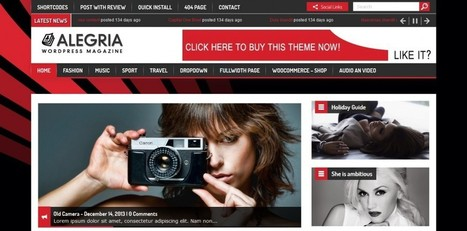 Alegria Responsive WordPress Theme | eCommerce Website Templates | Scoop.it