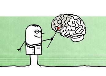 Accueil - Mon Cerveau à l'école | L'eVeille | Scoop.it