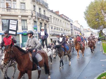 Les centres équestres refusent l'équitaxe   Agriculture en Dordogne   Scoop.it