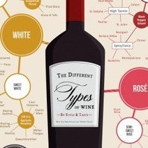 Different types of wine | Visual.ly | Public Relations & Social Media Insight | Scoop.it