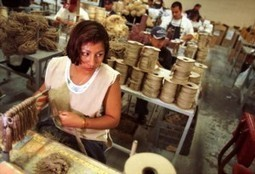 Mexican labour: almost as cheap as China | Third World Countries and Manufacturing | Scoop.it