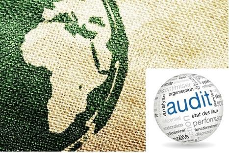 Audit et compétitivité : une relation bien étroite ! Par Rigobert Pinga Pinga | Intelligence économique & stratégique - Stratégie d'innovation | Scoop.it