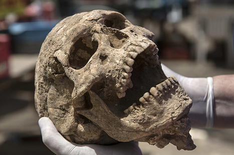 Unearthed bones bring Philistines to life | Geology | Scoop.it