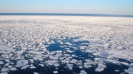 10 Facts About Arctic Sea Ice | Polar Bears International | GarryRogers Biosphere News | Scoop.it