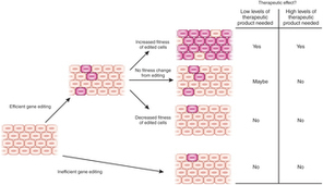 Therapeutic genome editing: prospects and challenges : Nature Medicine : Nature Publishing Group | genome editing | Scoop.it
