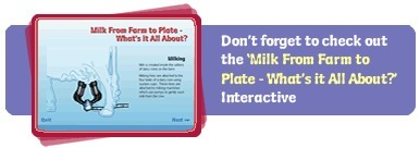 Interactive Milk Cycle - Dairy Australia | Stage 1 - Social Systems and Structures | Scoop.it