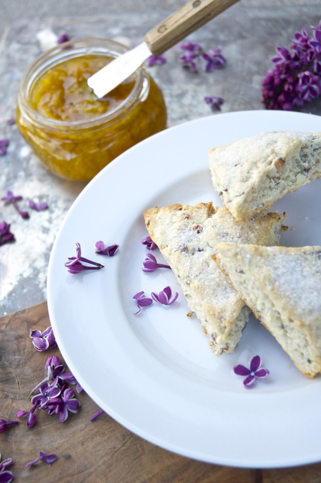 50 Edible Flowers To Brighten Up Your Meal | Organic Farming | Scoop.it