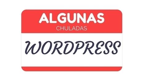 Crear un Blog o Tienda con WordPress y sus múltiples opciones | Diseño web Wordpress y SEO | Scoop.it