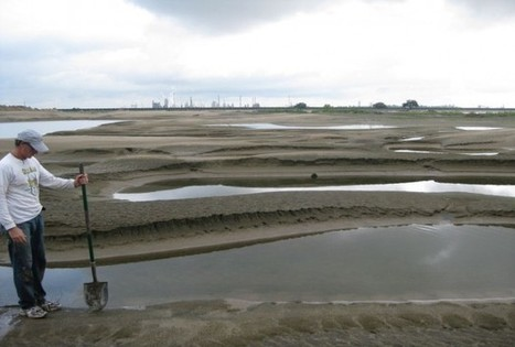 Mississippi River Sediments Plentiful Enough To Rebuild Shrinking Delta | Geology | Scoop.it