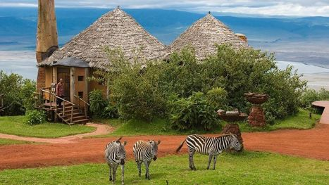 Tanzania Safari: There Is Lot More You Can Explore   Safaris in India & Africa   Scoop.it