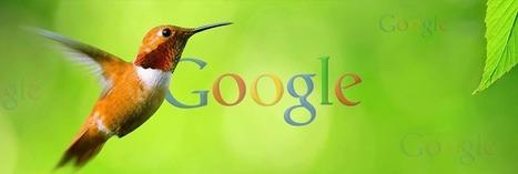 Google Hummingbird ( Colibrì ) | Famastudio's Blog | Scoop.it