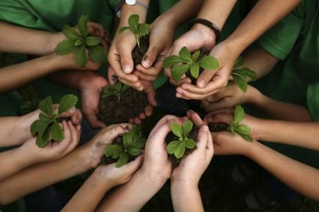 La permaculture : un art de vivre «autosuffisant» | Cette nature qui nous soigne | Scoop.it