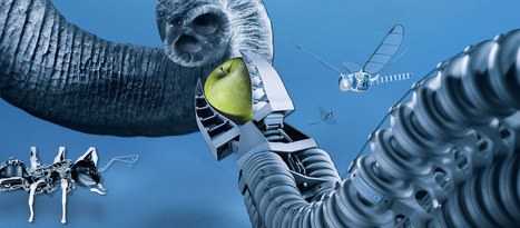 Bionic Learning Network | Festo Corporate | Designing the future | Scoop.it