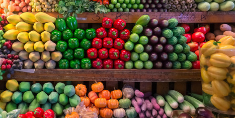 The Power of Our Food Choices | Food & Lifestyle | Scoop.it