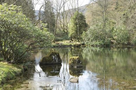 Visiting Cowden Japanese-style garden - Historic Environment Scotland Blog | Loch Ness Monster | Scoop.it