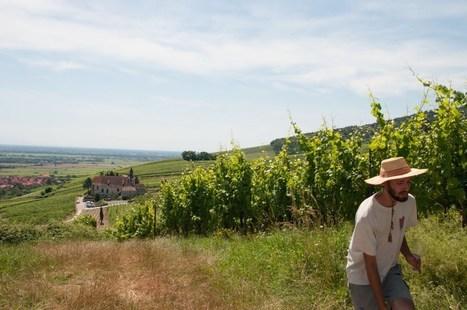 Florian Beck-Hartweg, le Savoir de la Terre | Gastronomy & Wines | Scoop.it