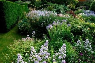 Throw the Hoe - Veddw House Garden | Gardening | Scoop.it