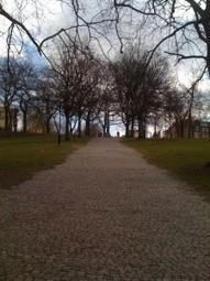 Nottingham forest park | RichDubai | Scoop.it