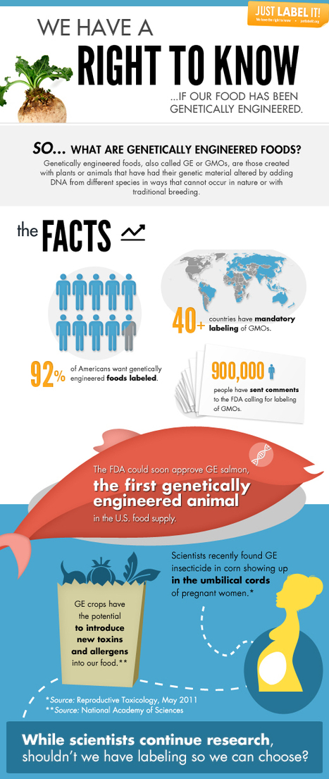New Infographic- GMOs -- We Have a Right to Know! | green infographics | Scoop.it
