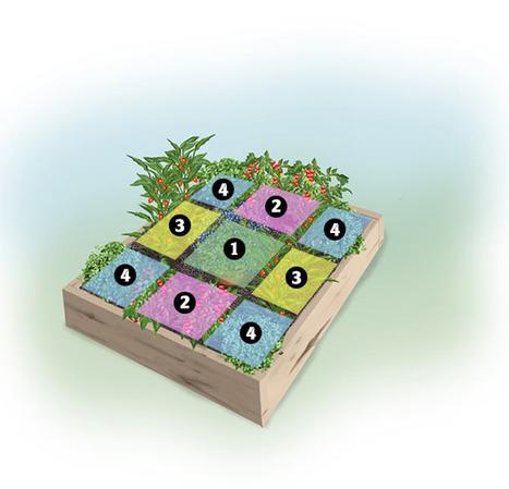 Munchkin Garden: 4 x4-foot Garden - Bonnie Plants | Annie Haven | Haven Brand | Scoop.it