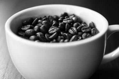 La demande de café toujours plus forte | Questions de développement ... | Scoop.it