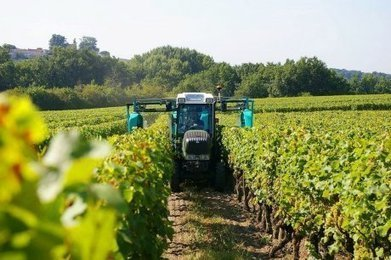 "Bommes (33) : un tracteur qui évite la dispersion des pesticides | ""Viticulture en gironde"" 