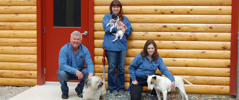 Cat Boarding Services – Country Inn Kennel and Cattery | Country Inn Kennel and Cattery | Scoop.it