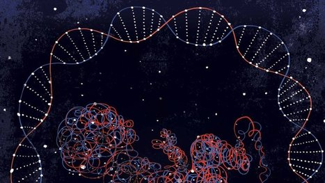 The Path to Reading a Newborn's DNA Map | leapmind | Scoop.it