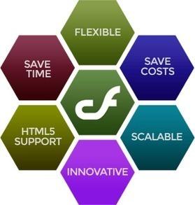 Hire Best ColdFusion Web Development Company India | Website Design & Development Company-Netgains | Scoop.it