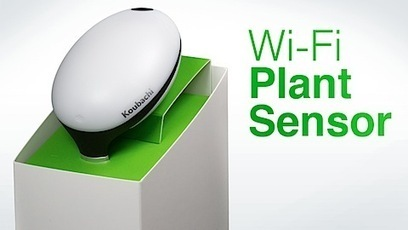 Koubachi plant sensor is finally available!! | Web of Things | Scoop.it