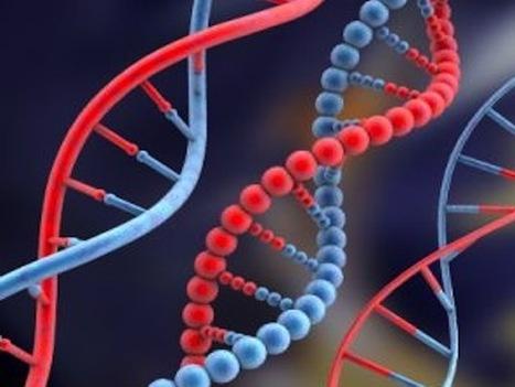 Maladies génétiques : l'âge du père en cause : Allodocteurs.fr | 9 mois de grossesse: enceinte et en forme | Scoop.it