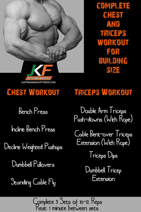Complete Chest and Triceps Workout for Building Size | Best Leg Workouts For Mass Gain | Scoop.it