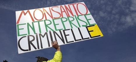 Monsanto, trois vies et beaucoup de scandales | Planete DDurable | Scoop.it
