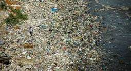 Pacific garbage patch 100x larger than in 1972; fish ingest up to 24,000 tons of plastic each year | OUR OCEANS NEED US | Scoop.it