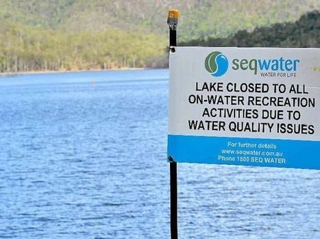 Borumba Dam closed due to massive blue-green algae bloom - Gympie Times | cyanobacteria | Scoop.it