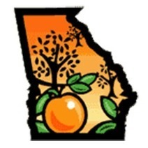 "Gov. Deal Signs SB2 and SB132 - Dual Enrollment Bills - Peach Pundit | Buffy Hamilton's Unquiet Commonplace ""Book"" 