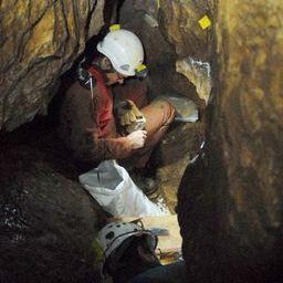 EUROPE : Ausgegraben: Die rätselhafte Parallelwelt derSteinzeit | World Neolithic | Scoop.it