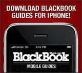 We Break Down 'Breaking Dawn' Star Ashley Greene - BlackBook Magazine | The Twilight Saga | Scoop.it
