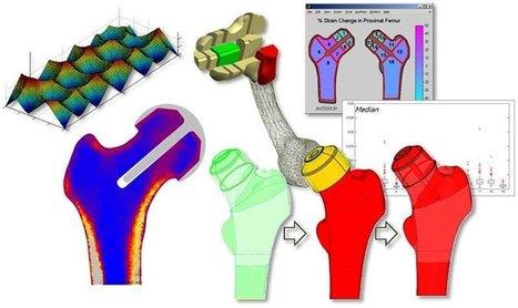 Engineering longer lifespan for joint replacements | KurzweilAI | Longevity science | Scoop.it