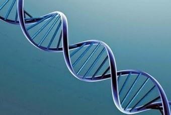 Popinga: DNA e poesia | Extrafalarias | Scoop.it