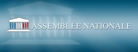 L'assemblée vote la réforme de la taxe de séjour (suite) | L'actualité de la Taxe de Séjour | Scoop.it