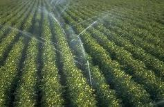 Irrigation : Raspberry IO | Arduino&Raspberry Pi Projects | Scoop.it