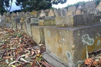 Historians hoping to unearth Hobart's orphan graves with geophysical survey - ABC News (Australian Broadcasting Corporation) | Shallow Geophysics | Scoop.it