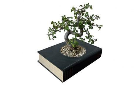 Paper-Back Planters: Recycling Books to Pot Indoor Plants   Designs & Ideas on Dornob   Garden Designer   Scoop.it