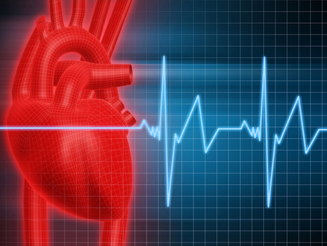 Cardiovascular Training - Guides and Articles: Get The Most Out Of Your Cardio | Health and Fitness | Scoop.it